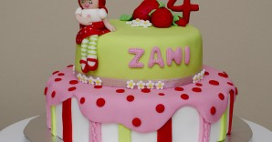 It was Zani's 4th birthday last week and her party theme was Strawberry Shortcake. All the decorations, snacks and themed birthday cake/cupcakes were made by […]